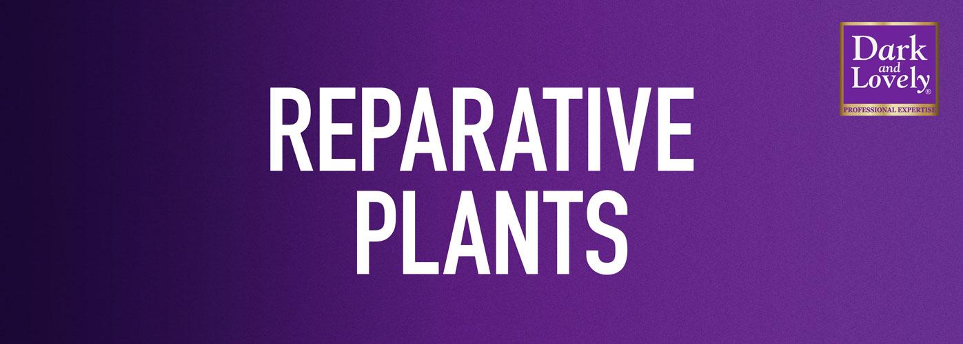 Reparative Plants Banner